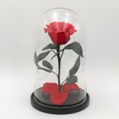 Красная роза премиум